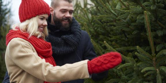 Prodejce vánočních stromků radí