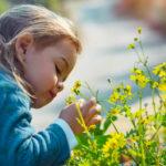 Jaro, alergie, astma